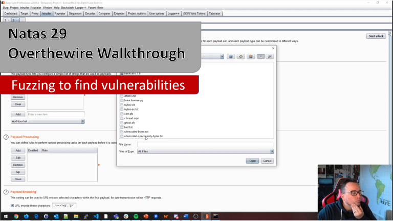 YouTube video release – Fuzzing for vulnerabilities